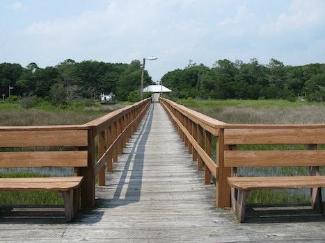 Free stock photo of beach, boardwalk, dock, deck