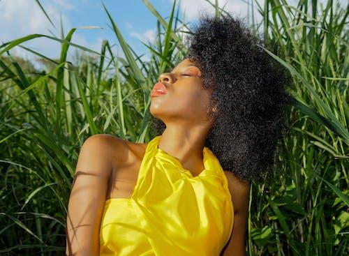 Kostenloses Stock Foto zu farbige frau, natürliches haar, schöne frau