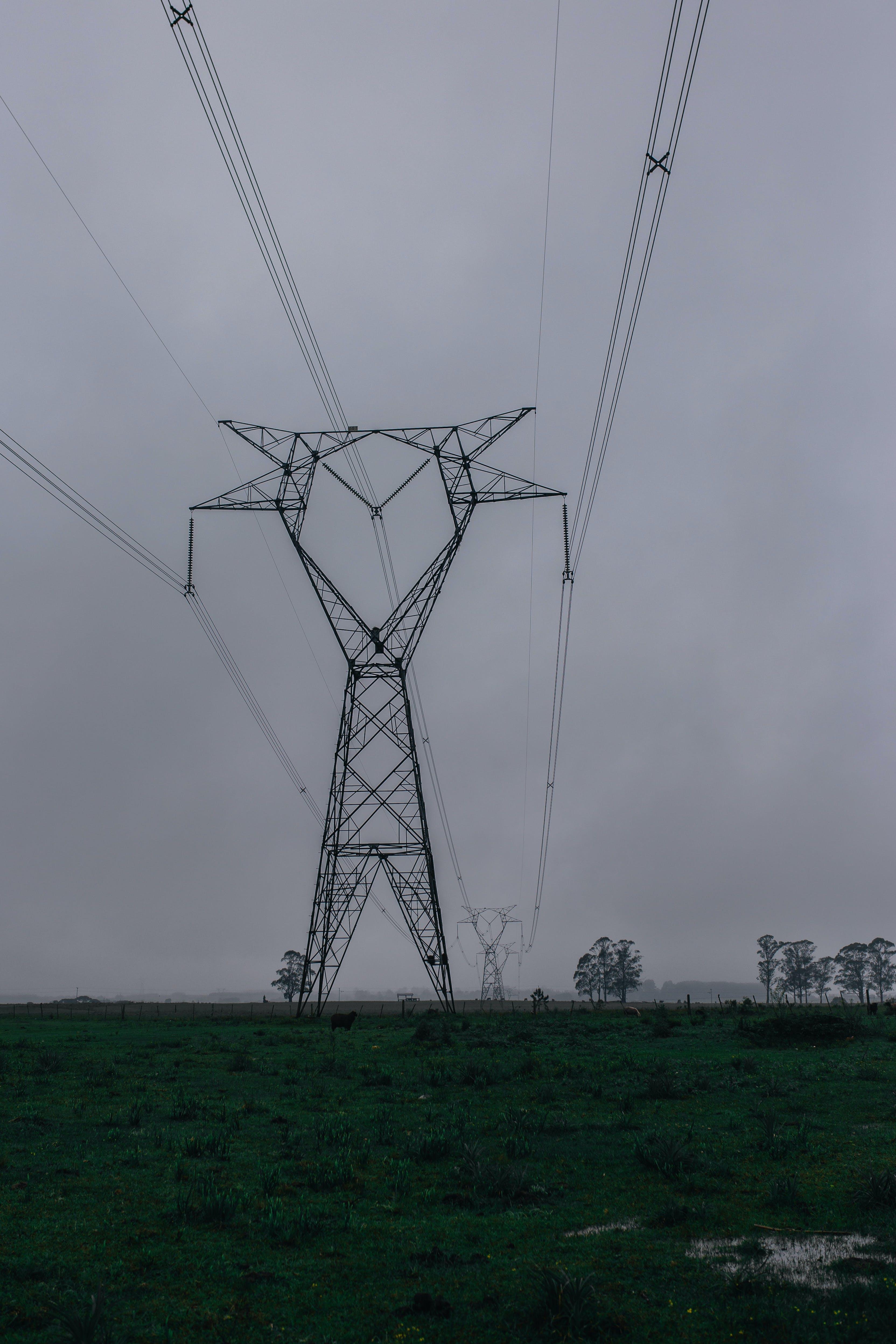Kostenloses Stock Foto zu drähte, elektrizität, hochspannungsleitungen, nebel