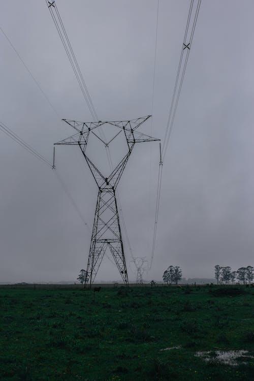 Gratis arkivbilde med elektrisitet, ledninger, strømledninger, tåke
