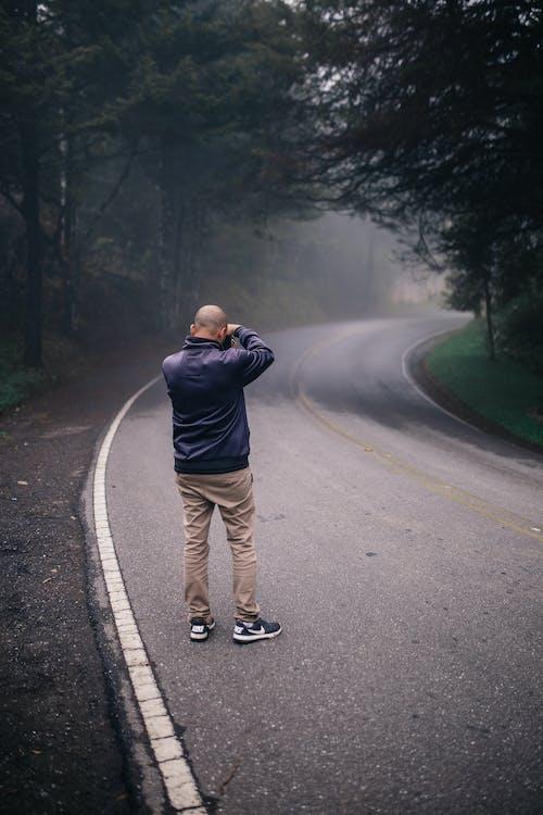 Fotos de stock gratuitas de arboles, carretera, con niebla, hombre