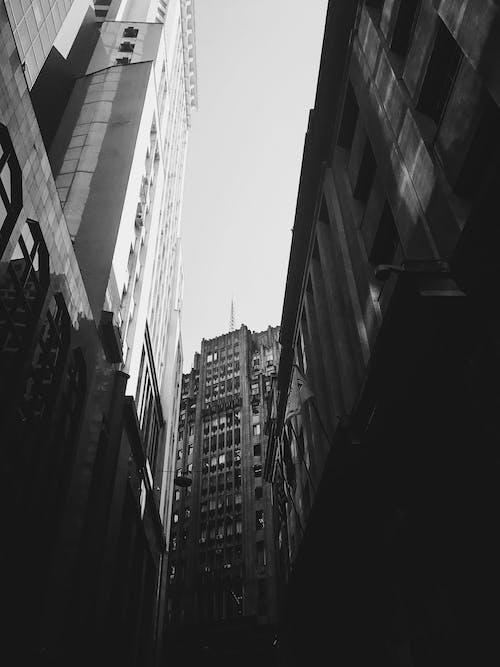 Základová fotografie zdarma na téma bílá, centrum města, černá, černobílá