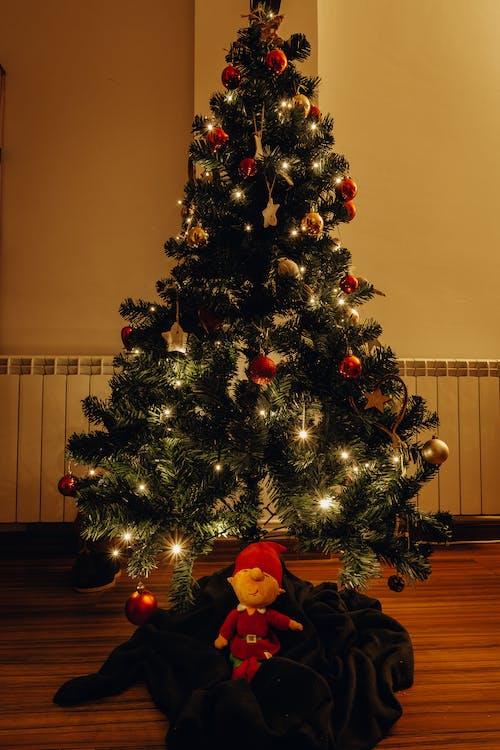 Imagine de stoc gratuită din agățat, beculețe de crăciun, brad de crăciun, celebrare