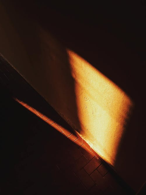 Sunlight Beaming on Brown Surface