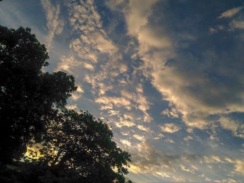 Free stock photo of azure, calm, clouds, evening sun