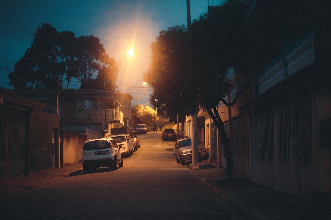 Gratis stockfoto met auto's, avond, bomen