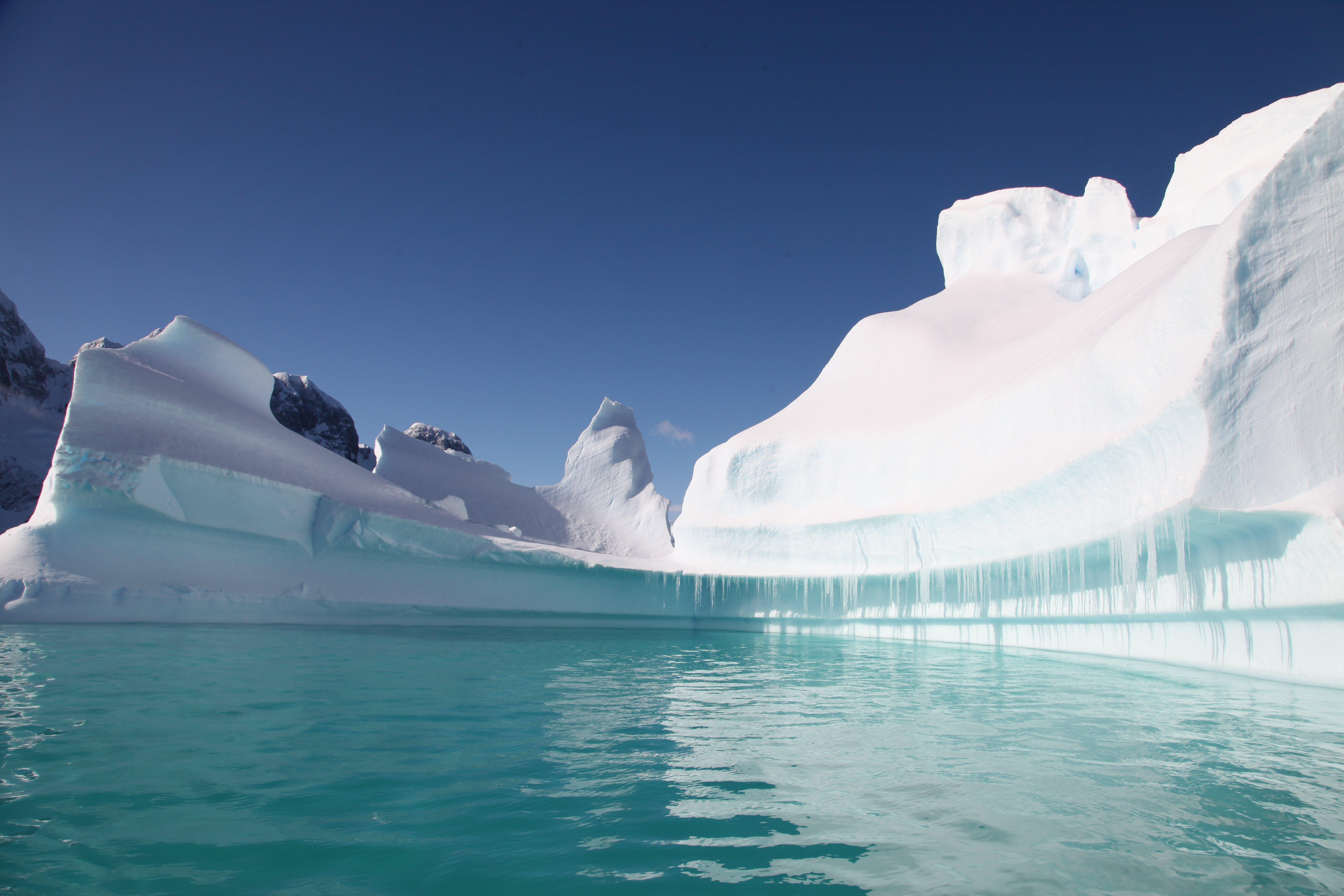 Free stock photo of antarctica, blue, ice, prue
