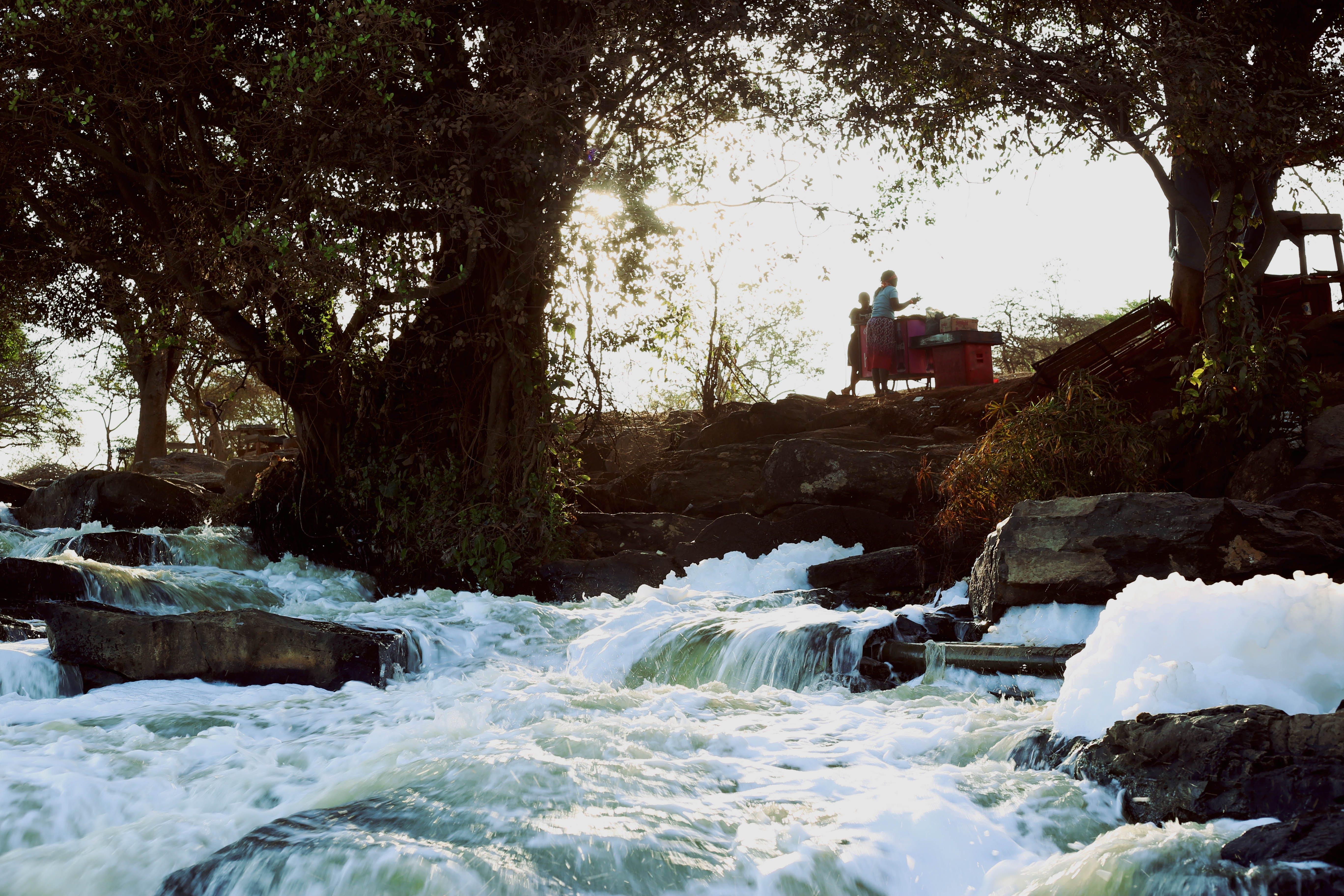 Foto stok gratis air, air terjun, alam, aliran