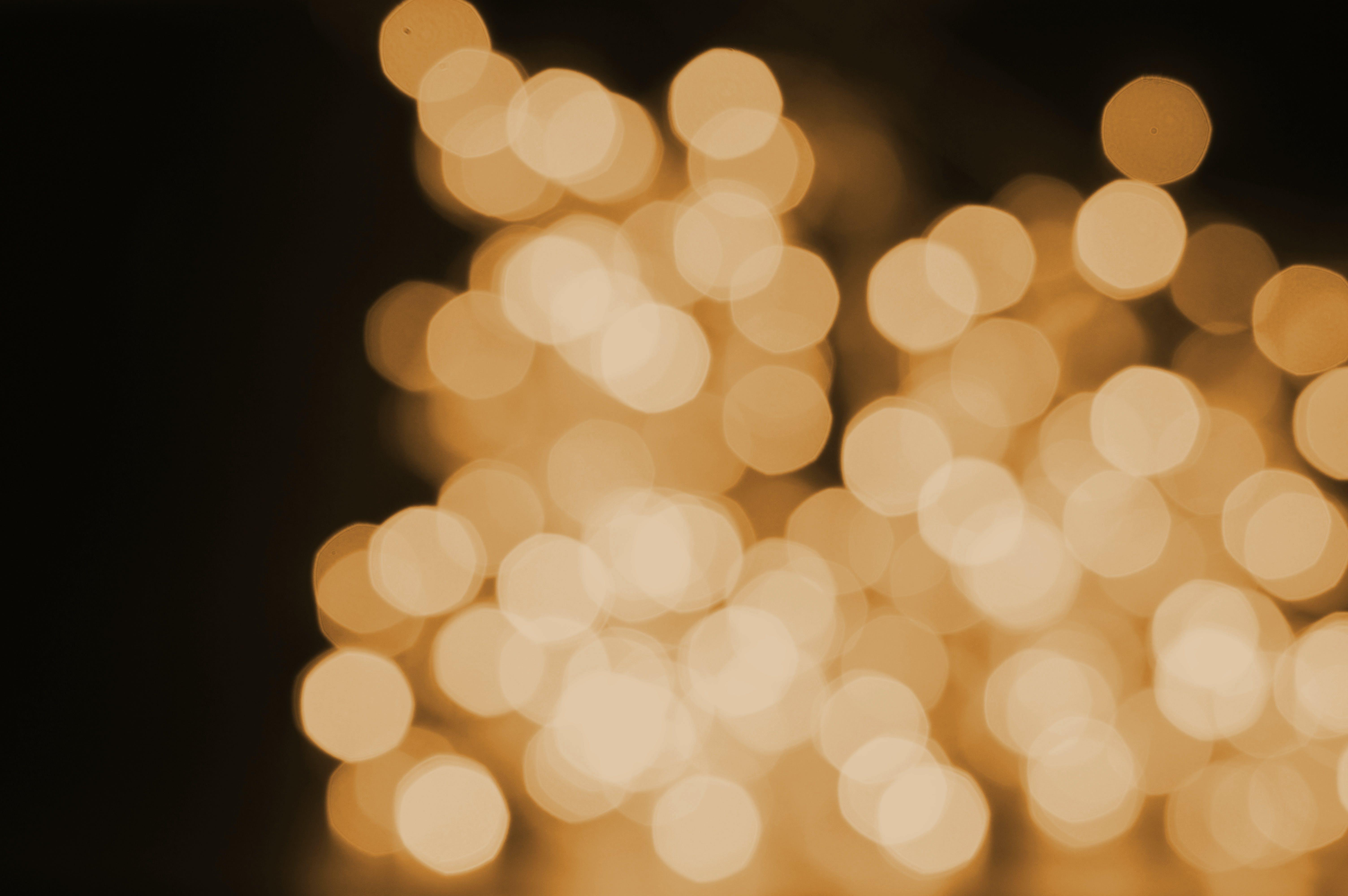 Free stock photo of background, beautiful, blur, blurred