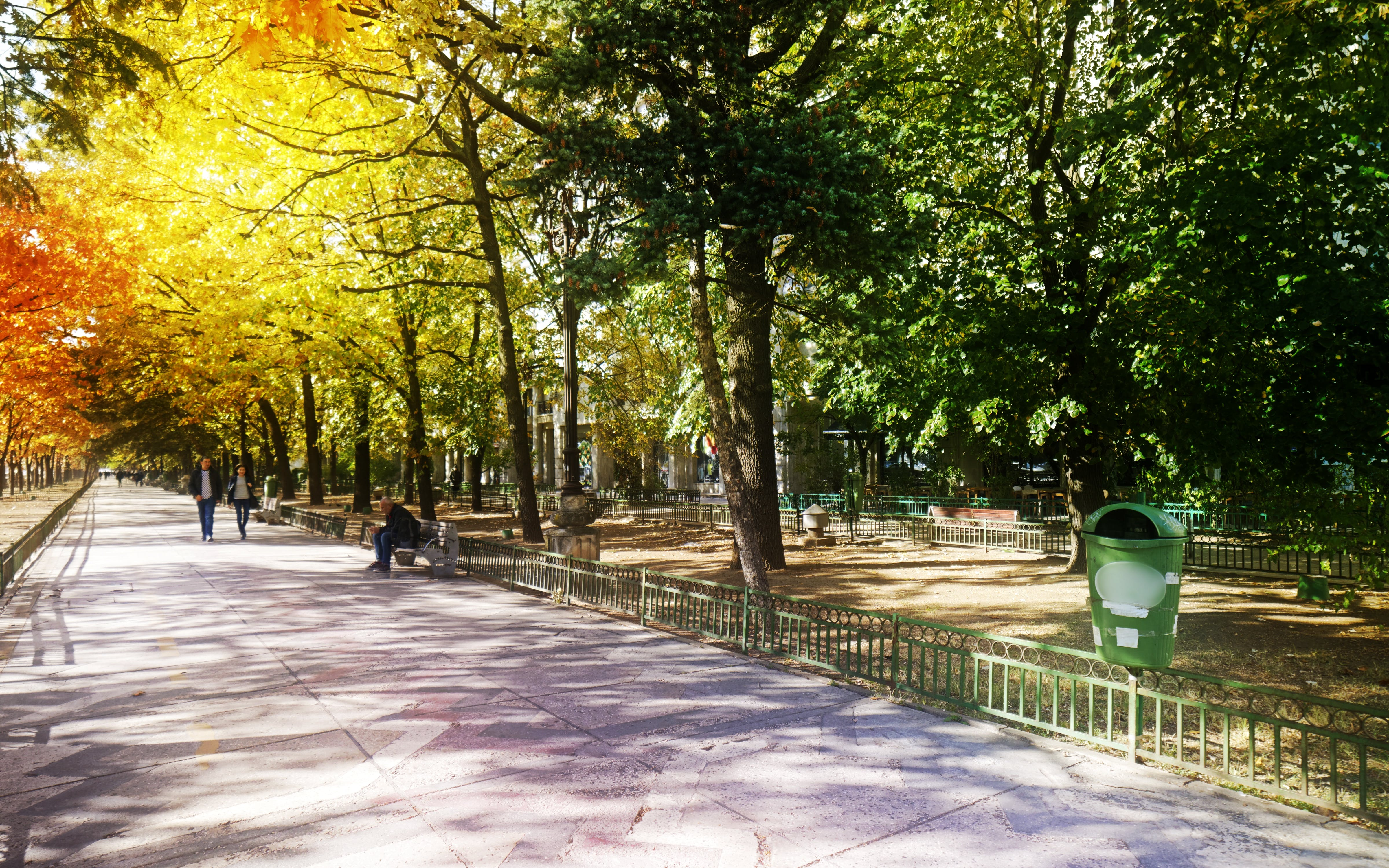 Free stock photo of autumn cityscape, benches, people, trees