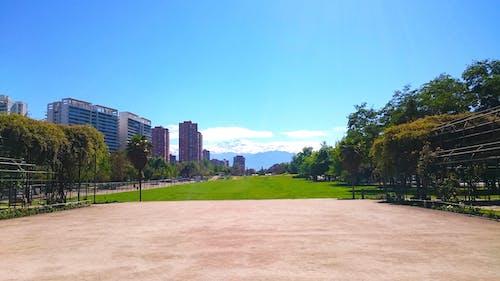 Ingyenes stockfotó central park, drámai ég, ég, égszínkék témában