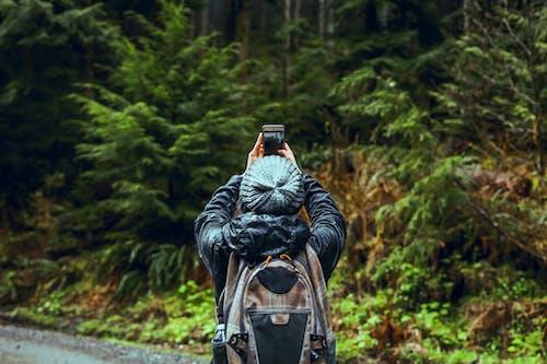 Fotos de stock gratuitas de arboles, aventura, bosque, haciendo una foto