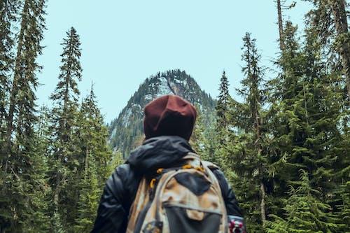 Kostnadsfri bild av äventyr, berg, dagsljus, landskap