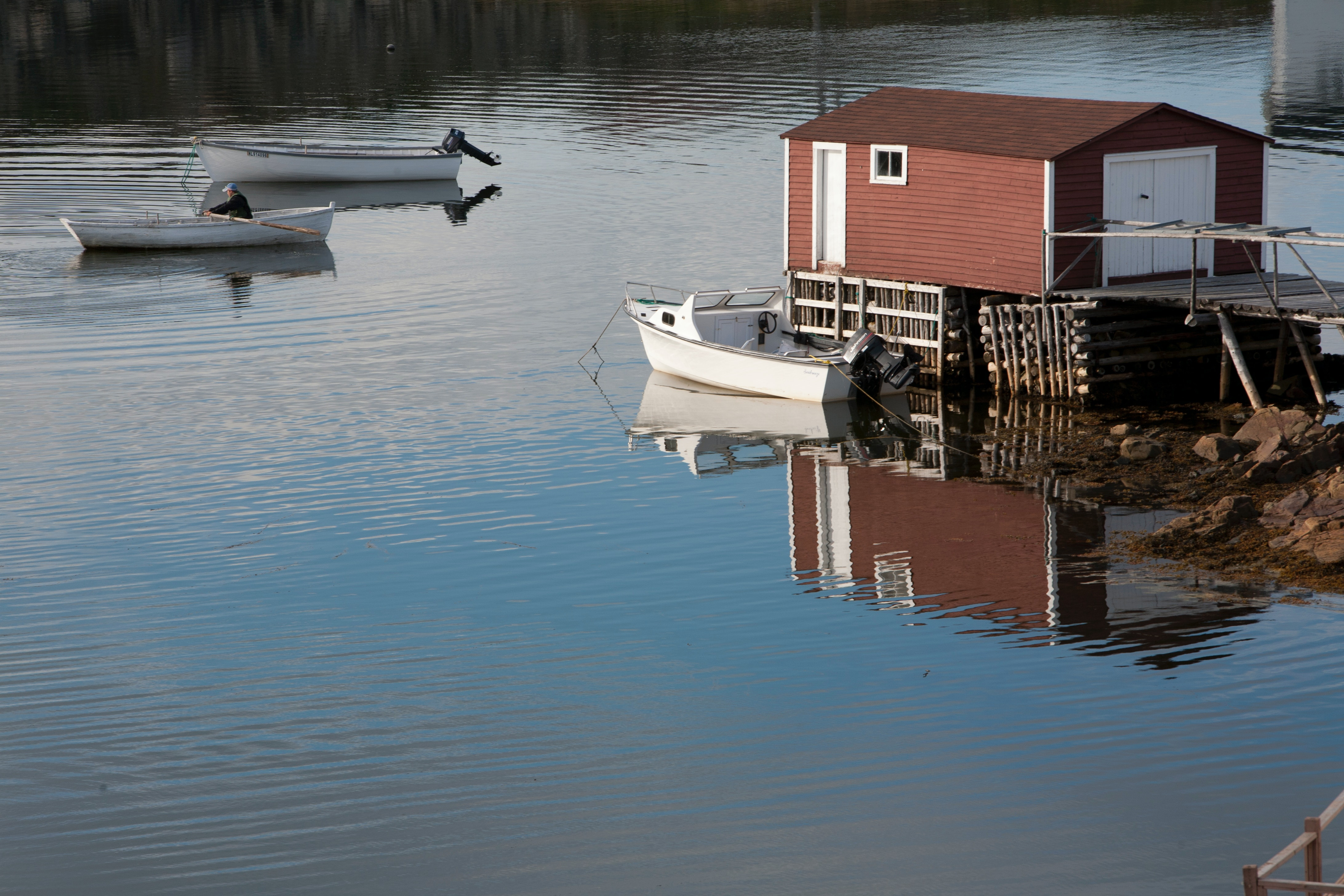 Free stock photo of boat house, row boat, rowing