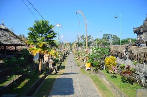 Foto stok gratis Bali, Indonesia