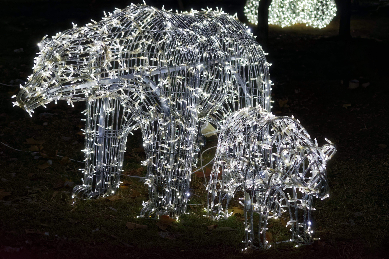 Free stock photo of christmas decorations, effects, light bears, night scene