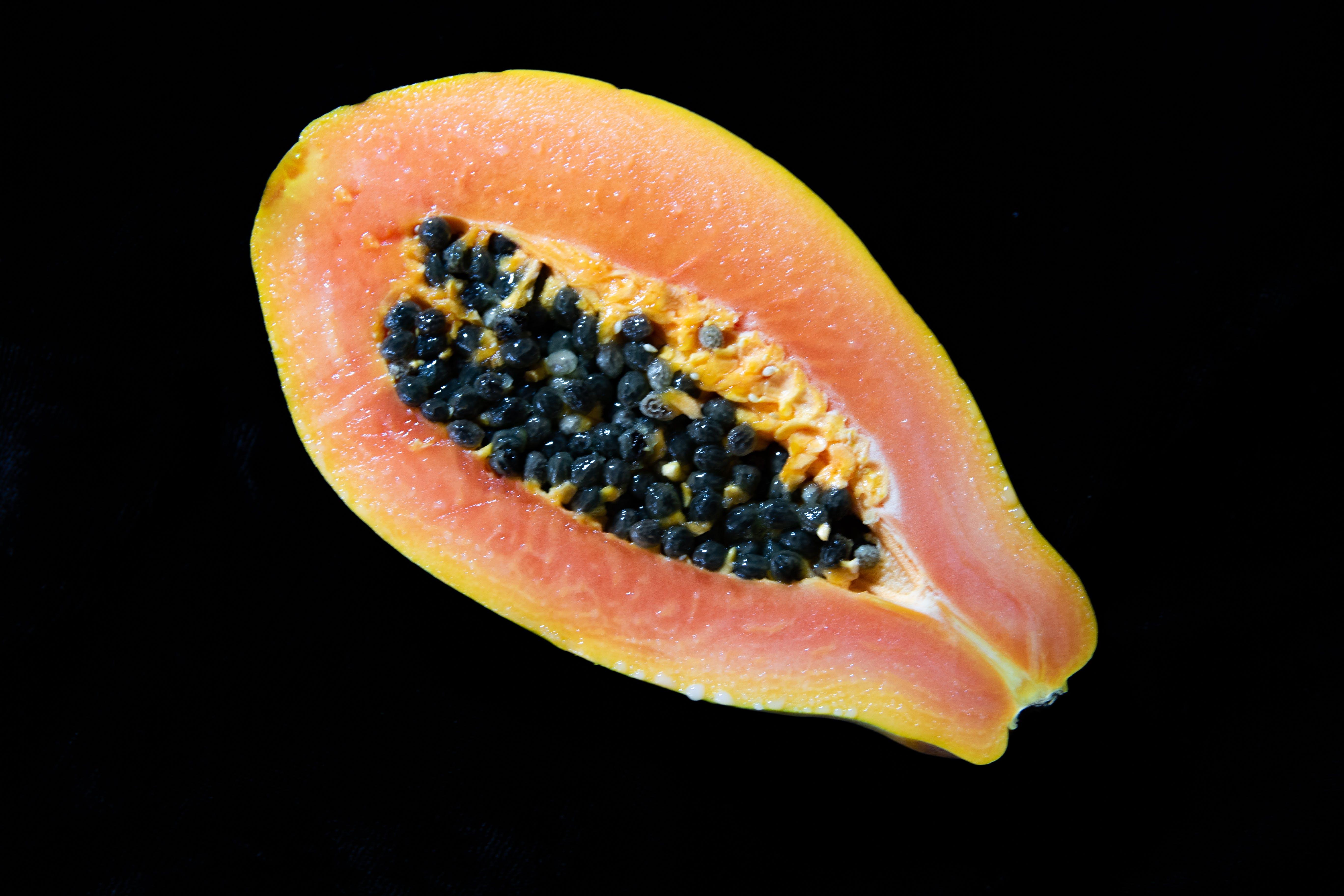 Free stock photo of fruit, garden, grow, papaya