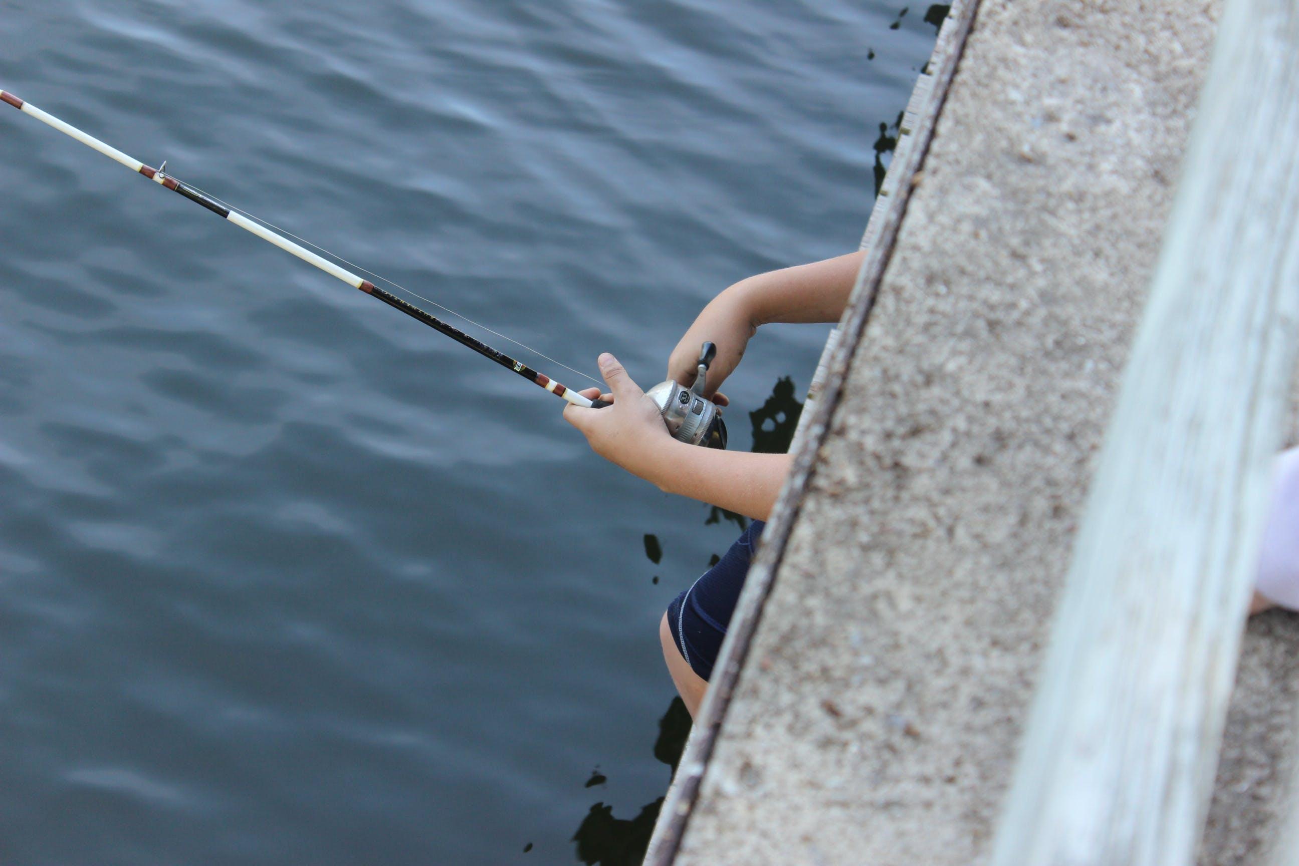 Free stock photo of artsy, boat, Boat dock, catch