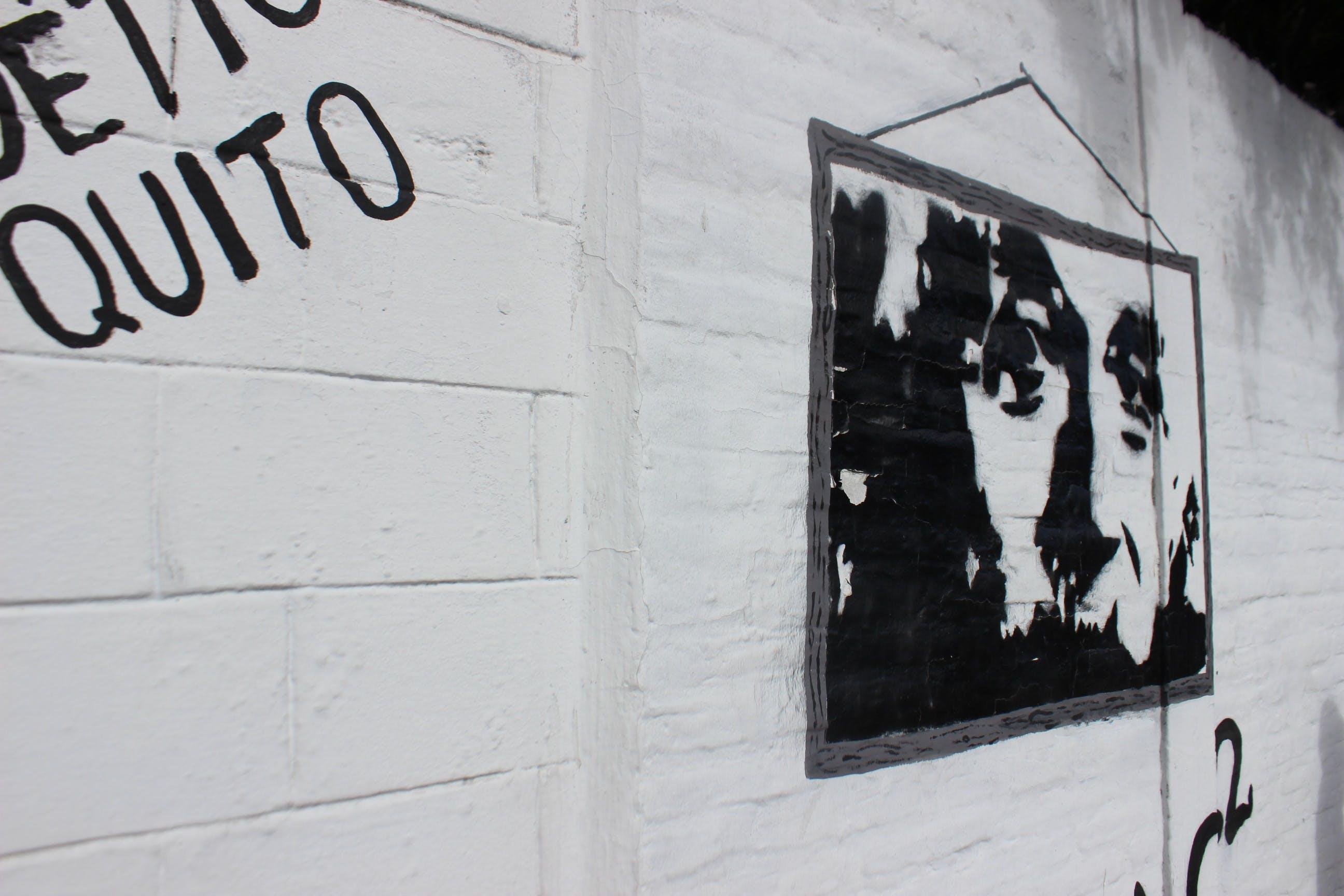 Free stock photo of albert einstein, black and white, black and-white, graffiti