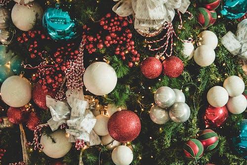 掛, 耶誔球飾品, 聖誕, 聖誕樹 的 免费素材照片