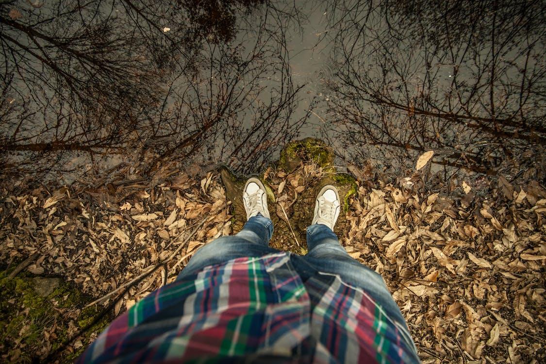 apă, iaz, în picioare