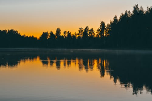 Calm Water Near Trees At Sunset