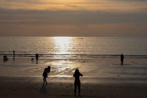 일몰, 황금빛 해변의 무료 스톡 사진