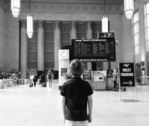 Free stock photo of architecture, monochrome, train station