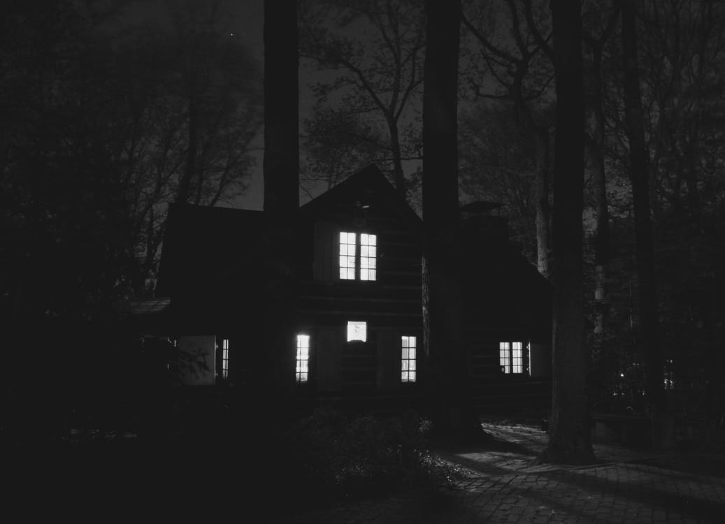 House With Lights on Near Trees during Night
