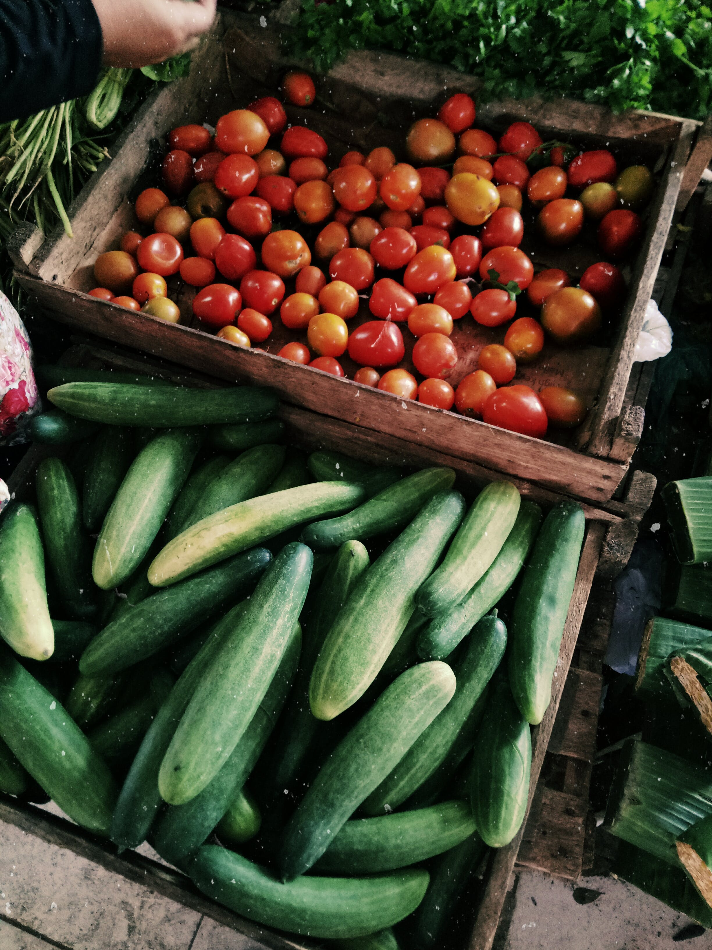 Photo of Cucumbers and Tomatoes in Wooden Crates