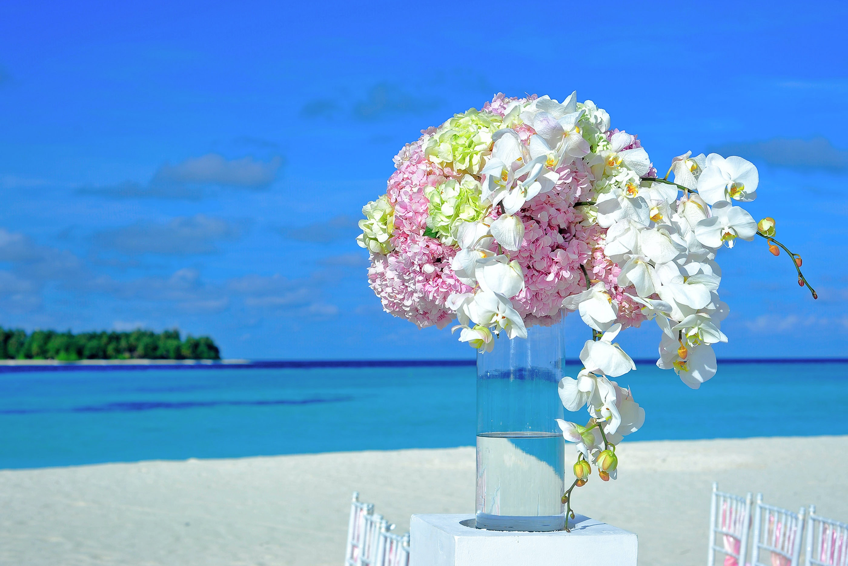 Yellow And Pink Petaled Flowers On Table Near Ocean Under