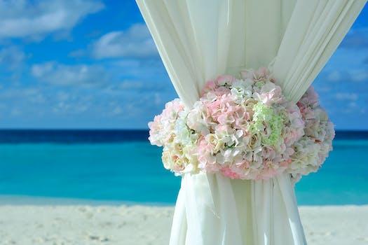 Pink White Petal Flower on White Curtain Near White Sand Beach on Daytime