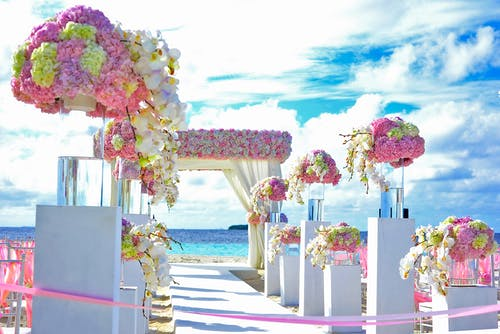 Pink, Yellow, and Purple Flowers Decor on Pathway