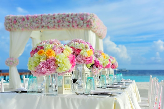 Yellow and Pink Petaled Flowers on Table Near Ocean Under Blue Sky at Daytime