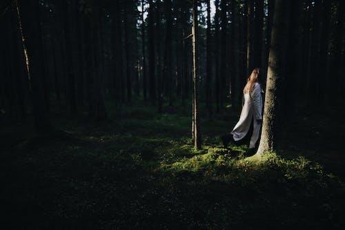 Kostnadsfri bild av dagsljus, kusligt, kvinna, miljö