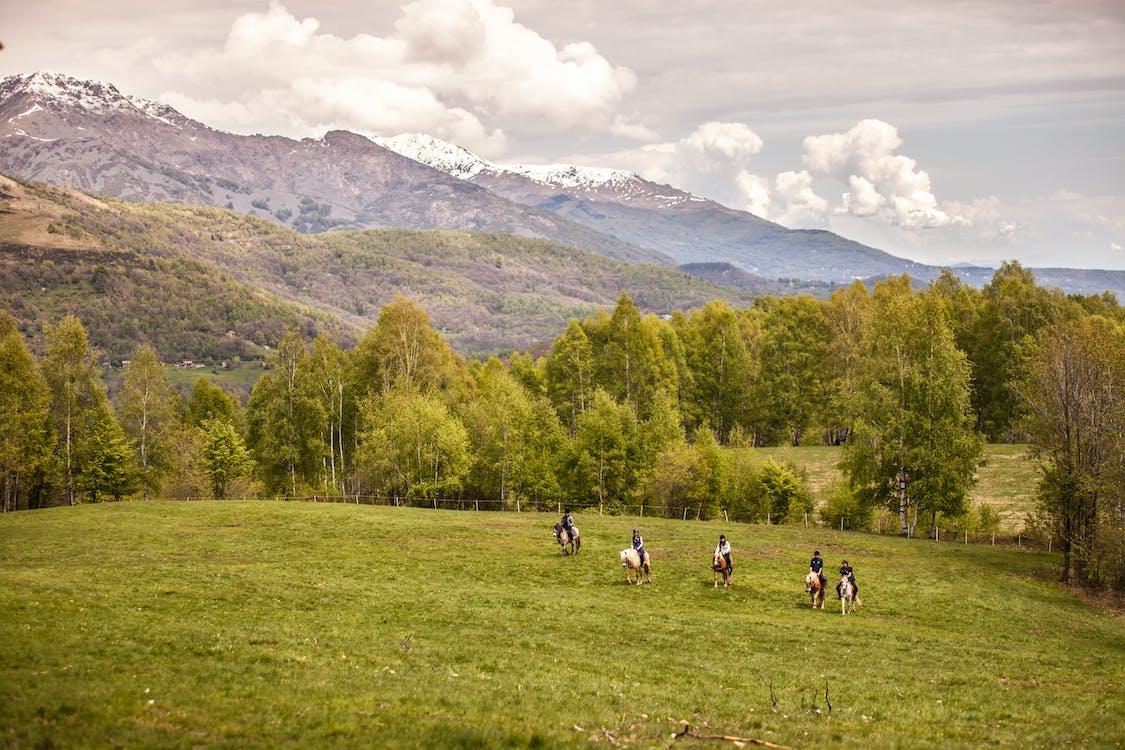 poney, trekking, valchiusella