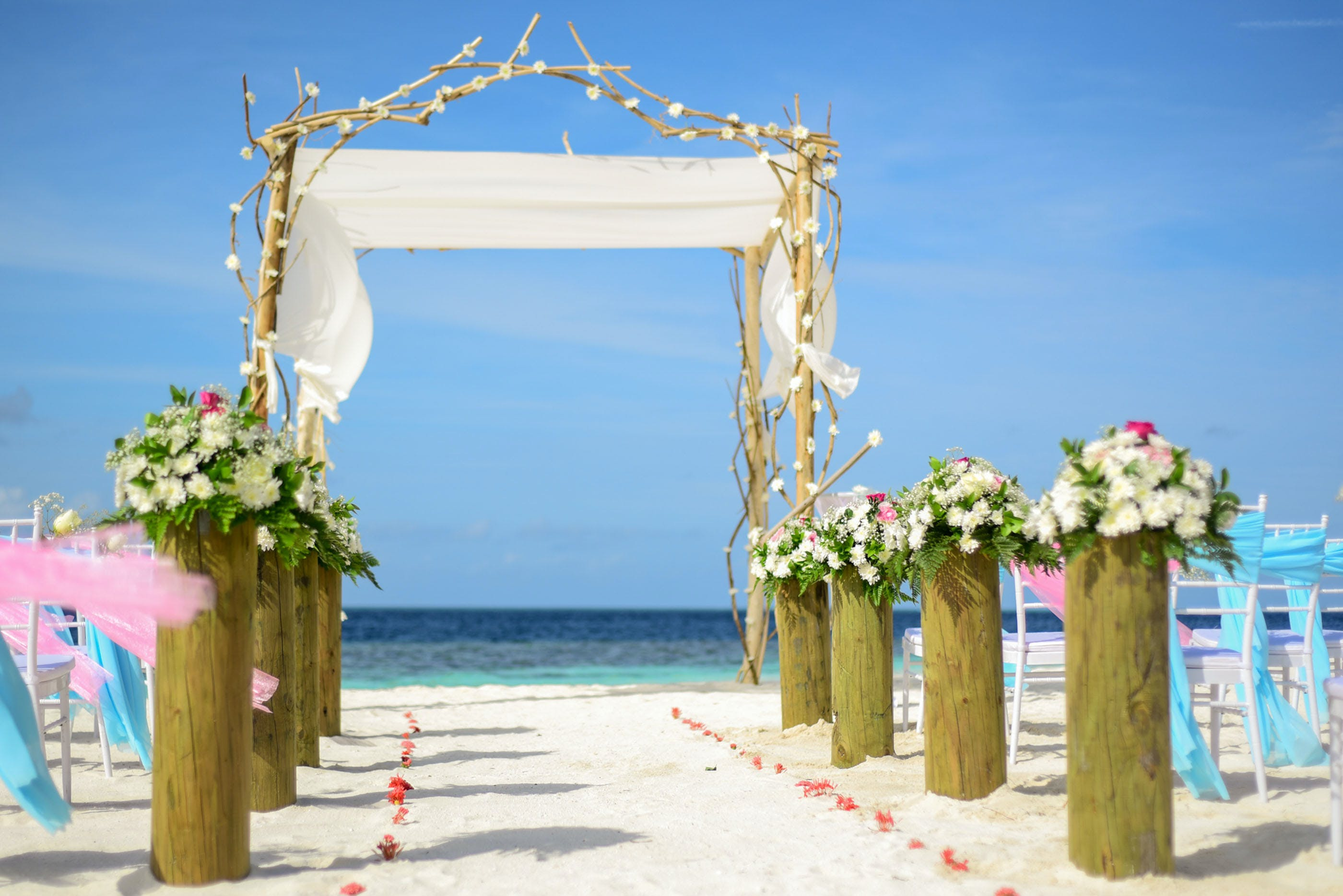 Line of White Flowers-topped Brown Wooden Pillars