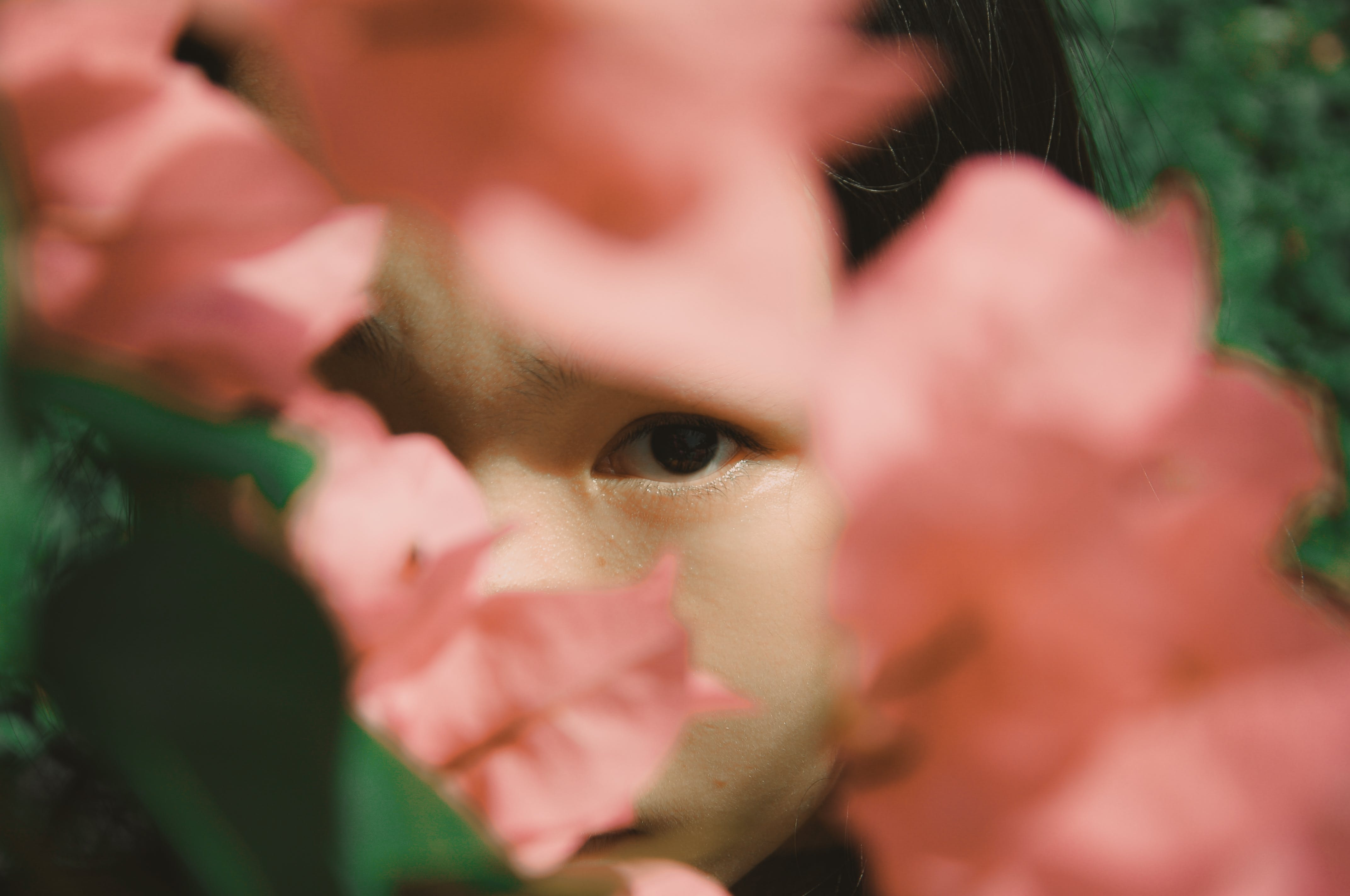 Close-up Photography Of Woman's Face Covered With Pink Bougainvillea Flowers