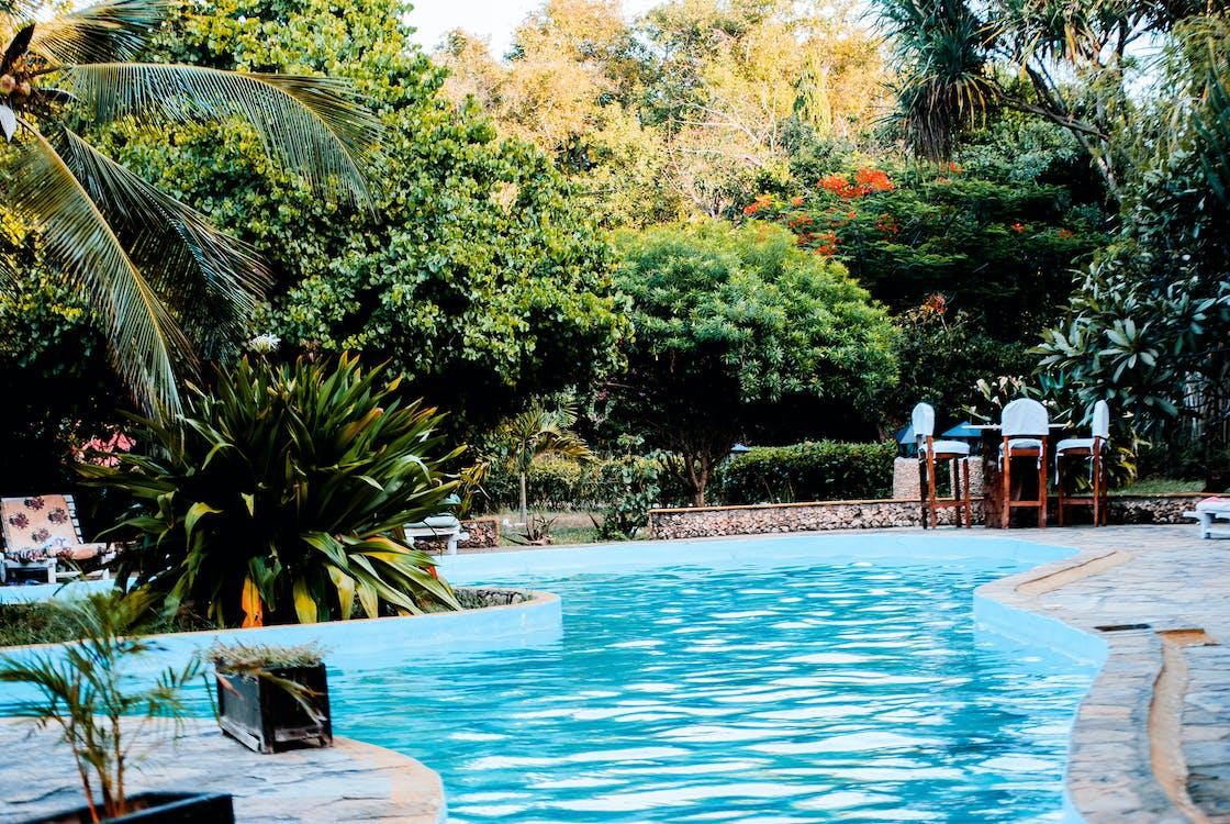 度假村, 挖出來的游泳池, 池畔