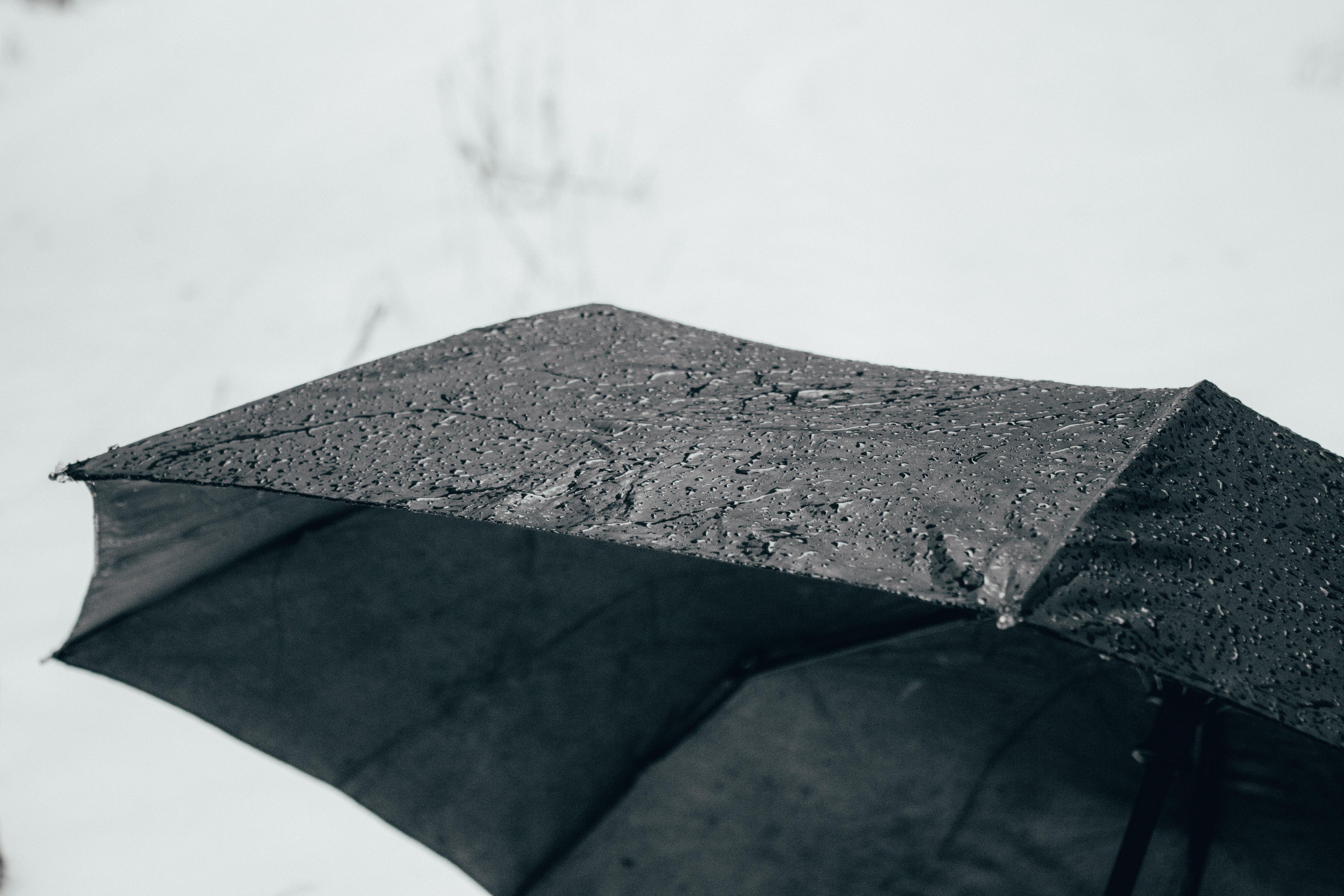 Free stock photo of bad weather, rain, rainy, snow