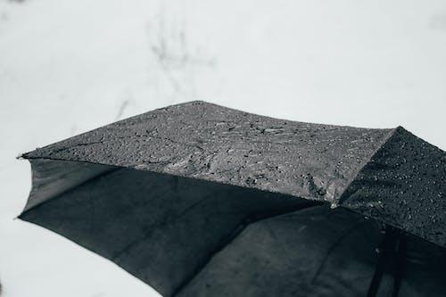 Gratis arkivbilde med dårlig vær, paraply, regn, snø
