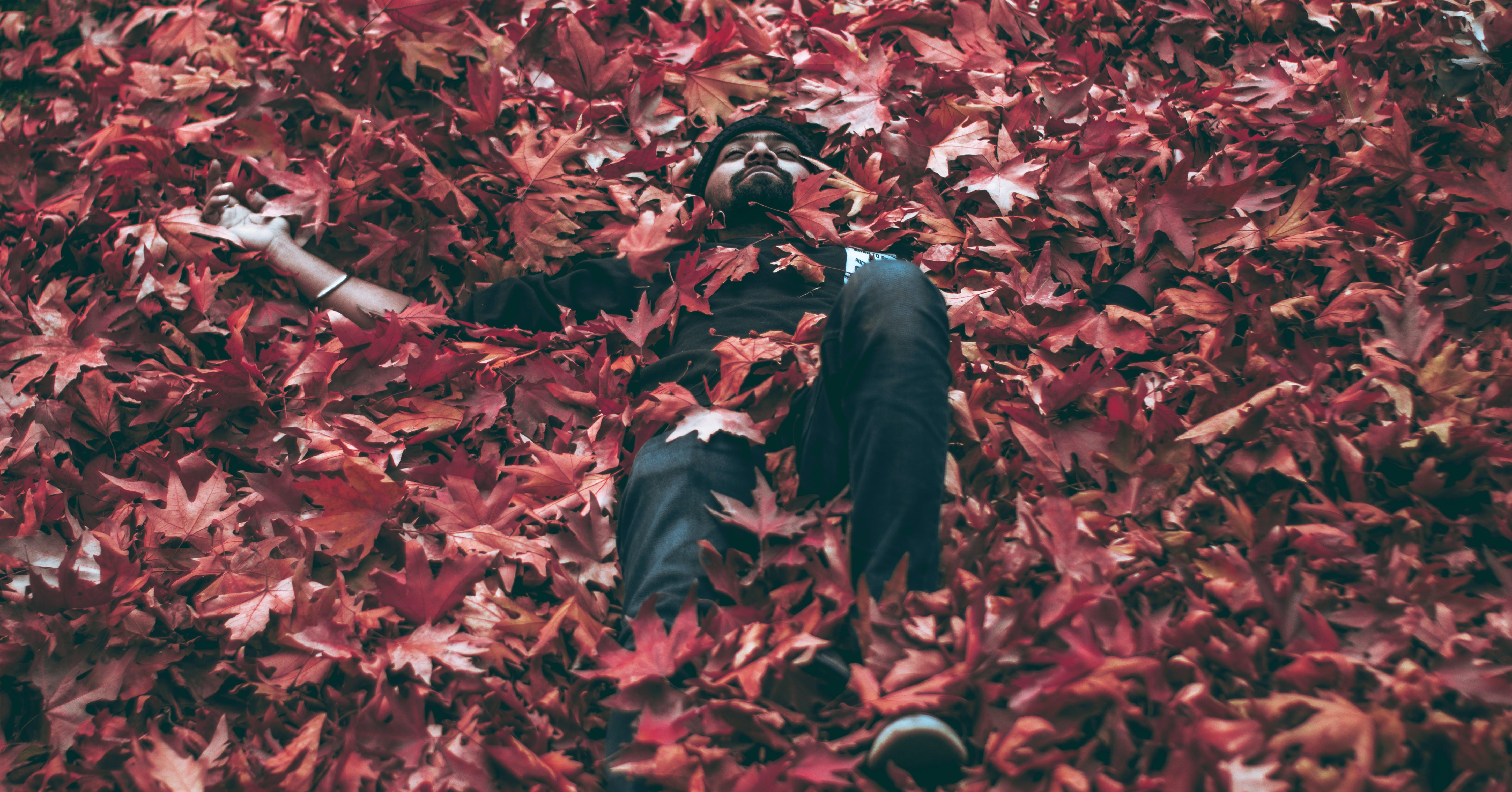 Man Lying on Bed of Maple Leaves