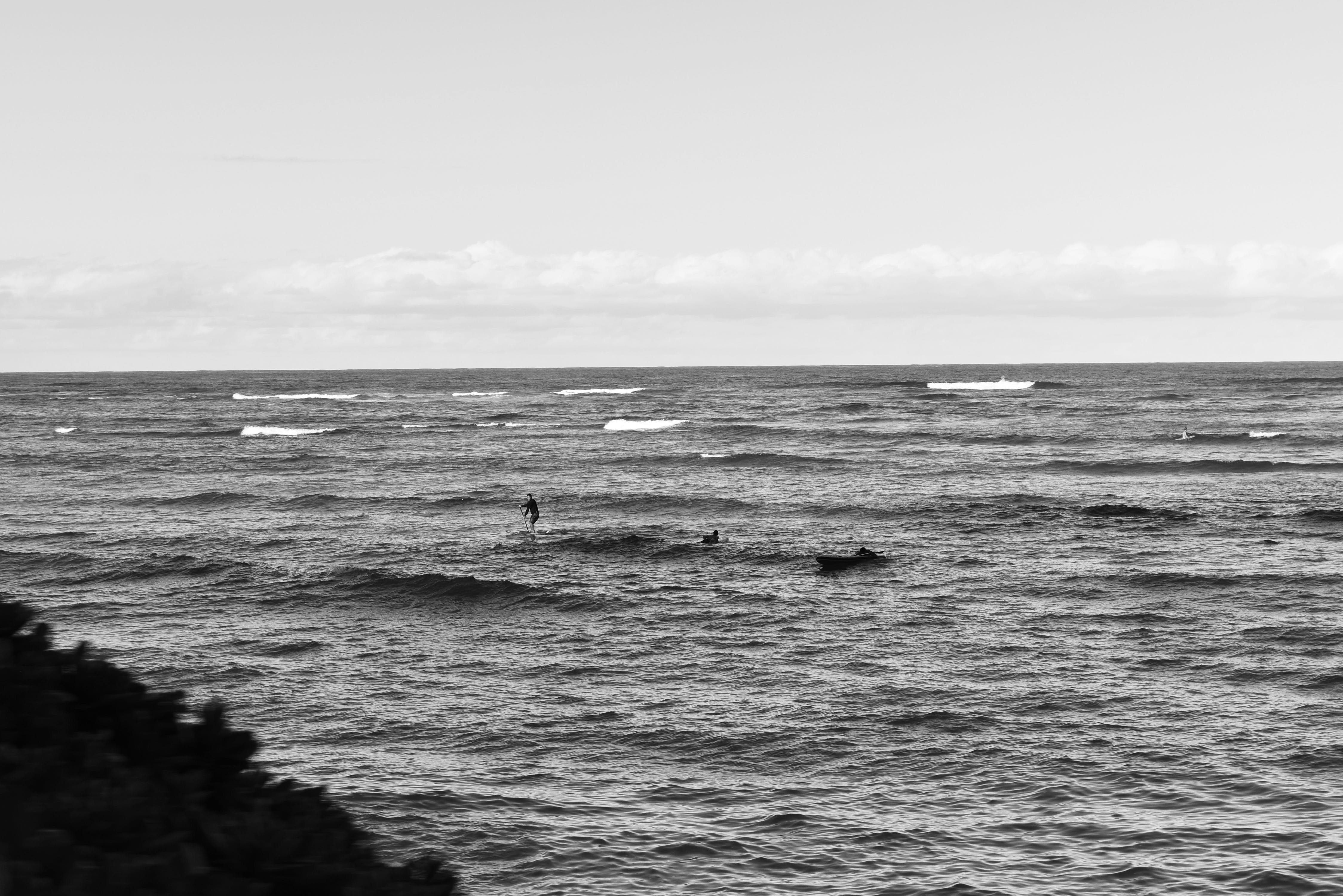 Free stock photo of black and white, hawaii, ocean, surfer