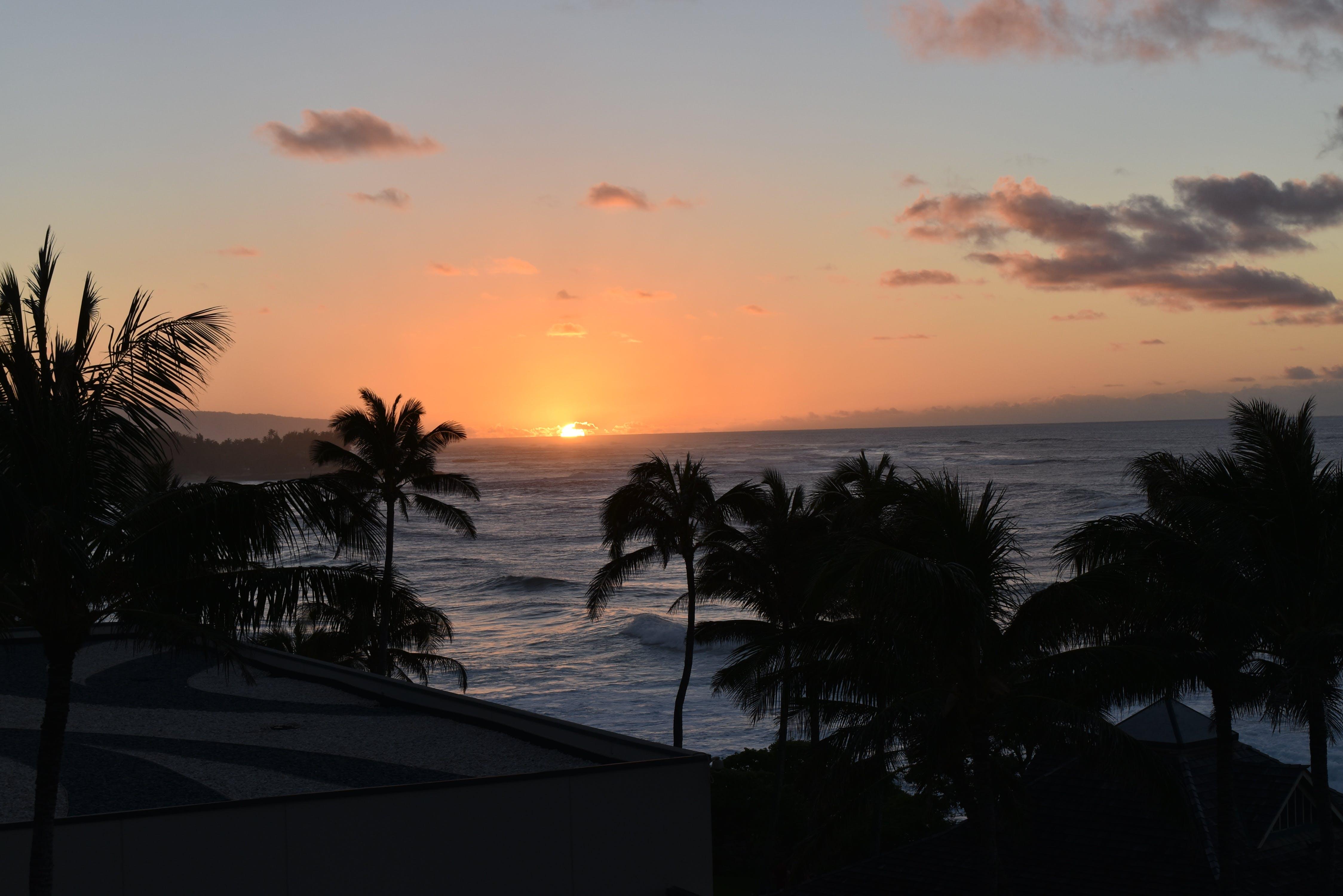 Free stock photo of sunset, sunset beach