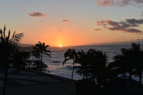 gün batımı, günbatımı sahili içeren Ücretsiz stok fotoğraf