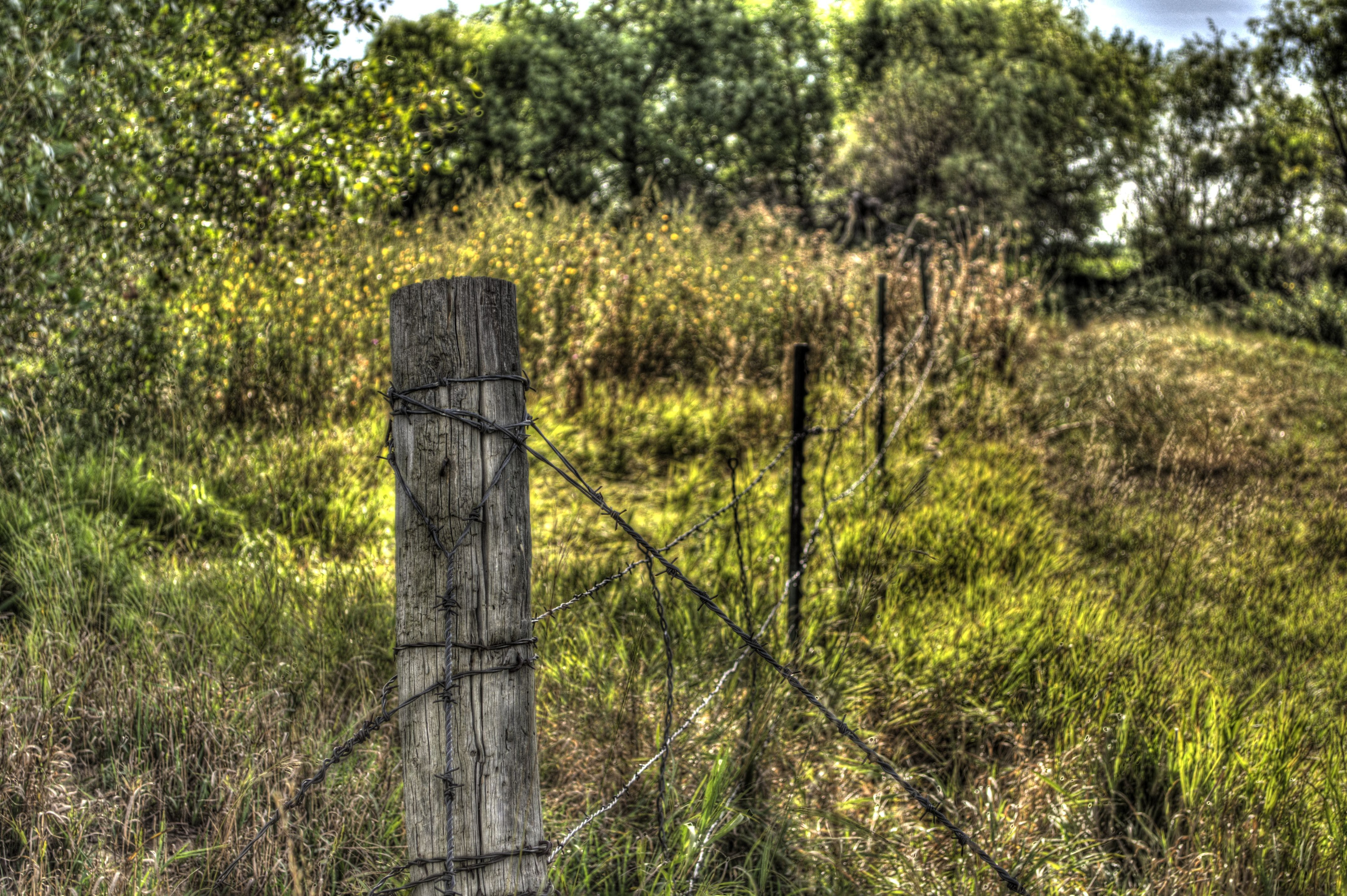 Free stock photo of fence post, indian summer, landscape, rural
