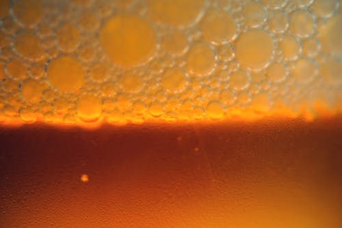 Free stock photo of beer