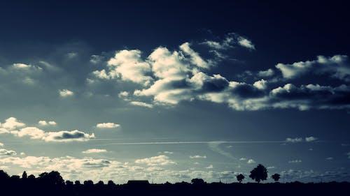 Бесплатное стоковое фото с деревья, живописный, небо, облака