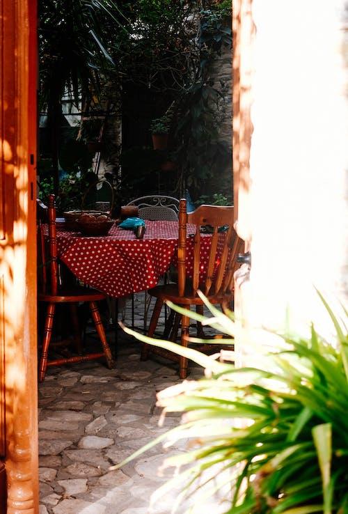 Základová fotografie zdarma na téma dekor, denní, denní světlo, design