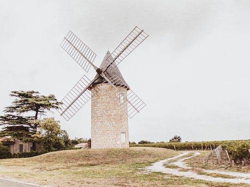 Foto profissional grátis de arquitetura, bordeaux, construção, França